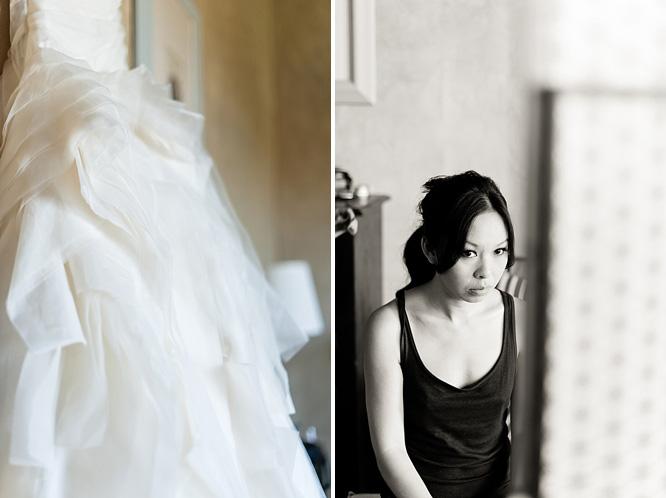 Vera Wang diana gown